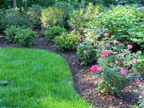 pictures of landscaping weed control duke s landscaping
