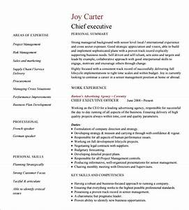 14 executive resume templates pdf doc free premium With executive cv format