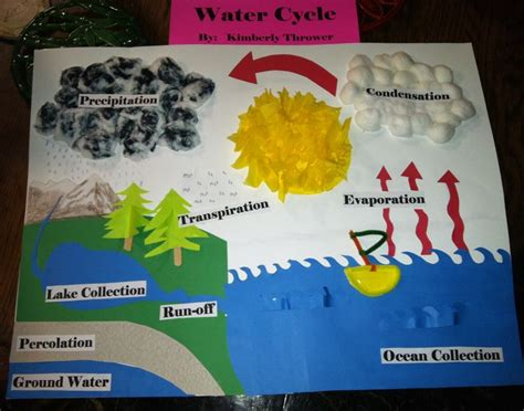 my sweet s water cycle project i think she did 484 | dc267d54b5523e602c76c0539a248d80 water cycle project science projects