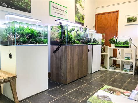 Aquascape Store by Aquarium Gardens Visit Our Aquascaping Showroom And Shop