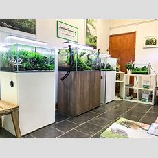 Aquarium Gardens Visit Our Aquascaping Showroom And Shop