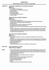 Resume For Summer Internship Resume Ideas