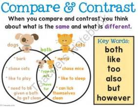 Compare and Contrast Anchor Chart First Grade