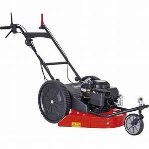 Tondeuse Thermique Briggs Et Stratton : debroussailleuse a 3 roues moteur briggs stratton dt ~ Dailycaller-alerts.com Idées de Décoration