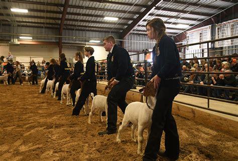 tomball students showcase animal raising skills  annual