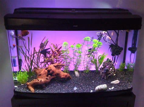 aquarium en coin a vendre aquarium 120l 224 vendre