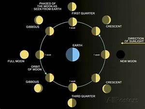 A Diagram Showing The Phases Of The Earth U0026 39 S Moon