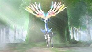 pokemon x and y legendary details revealed
