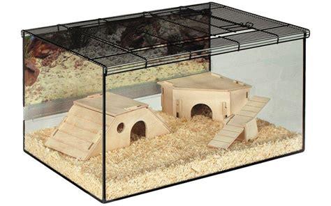 gabbia per criceti gabbie per criceti quale la migliore animali pucciosi