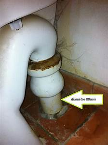 Tuyau Evacuation Wc : changer les toilettes mais que faire comme evacuation ~ Farleysfitness.com Idées de Décoration