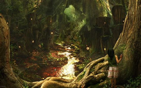 fairy tale forest wallpapers and images wallpapers