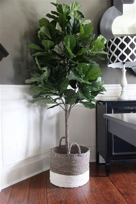 faux fiddle leaf best 25 artificial plants ideas on artificial