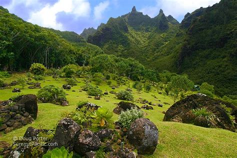 gardens kauai limahuli gardens on the north shore of kauai seems almost unreal and is a place where you can