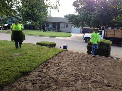 lawn installation sod installation daniels lawn and landscaping services