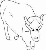 Ox Coloring Animal sketch template