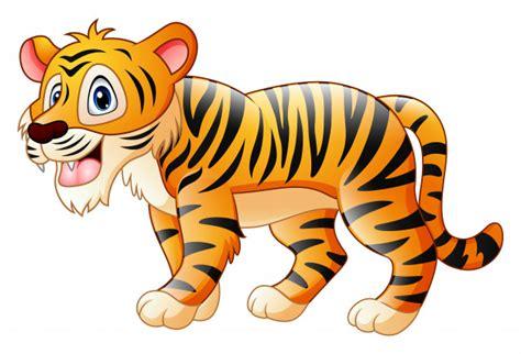 Lindo Tigre De Dibujos Animados