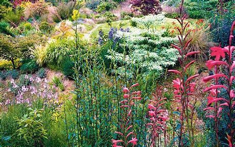 wildside garden garden to visit keith wiley s wildside nursery telegraph