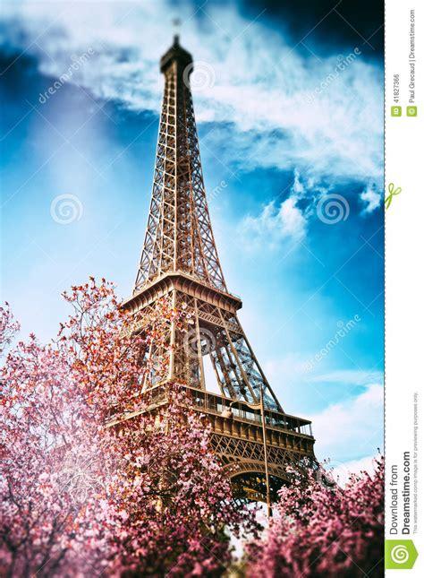 springtime  paris eiffel tower stock photo image