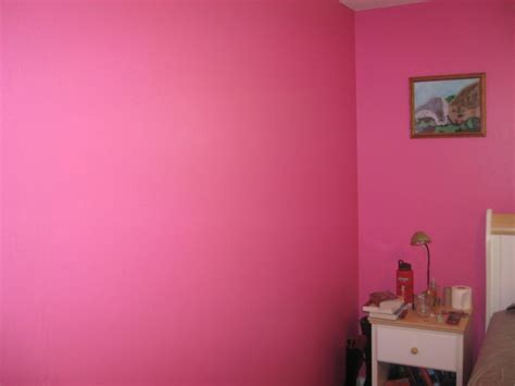 wall paint colors pink hawk haven