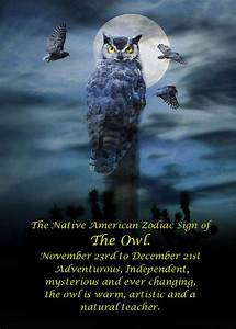 The Native American Zodiac Sign Of The Owl Photograph by