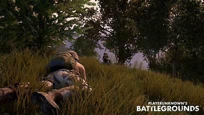 Battlegrounds Tera Playerunknown