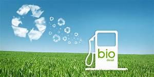 Biodiesel FAQs - Extreme Biodiesel (XTRM)   Biodiesel And ...