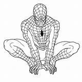 Spider Drawing Line Getdrawings sketch template