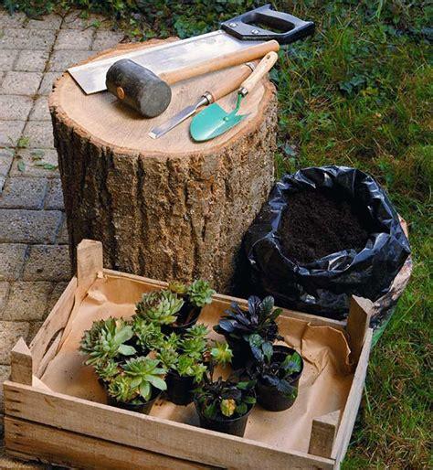 vasi da giardino fai da te come costruire un vaso in legno per piante grasse fai da