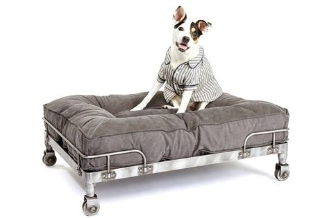 a flowchart guide to choosing a dog bed wsj