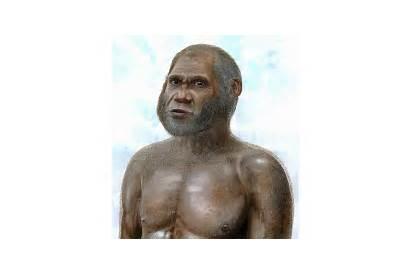 Human Archaic Species Ancient Age Stone Bone