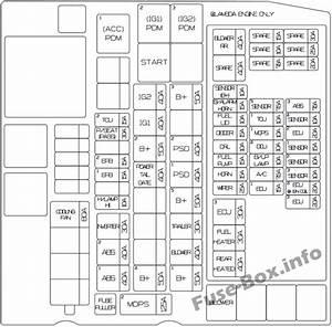 Fuse Box Diagram Kia Sedona  2015