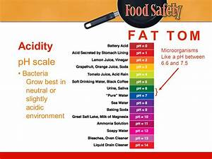 Why is Food Safety Important? - ppt video online download