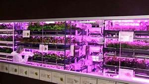 service professional field robotics agriculture robohub With katzennetz balkon mit led indoor garden