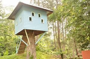 Baumhaus Für Kinder : baumhaus f r kinder damai beach resort damai beach holidaycheck sarawak malaysia ~ Orissabook.com Haus und Dekorationen