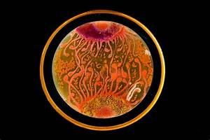 Art Grown in a Petri Dish
