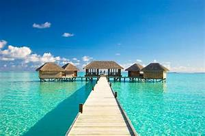 Lose Yourself in the Breeze of Maldives Island