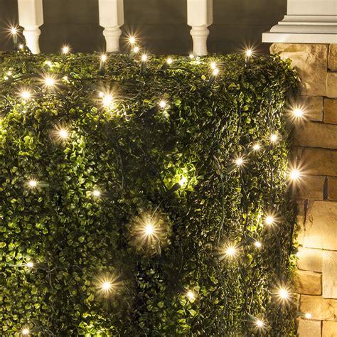 led net lights 5mm 4 x6 twinkle warm white led net lights green wire