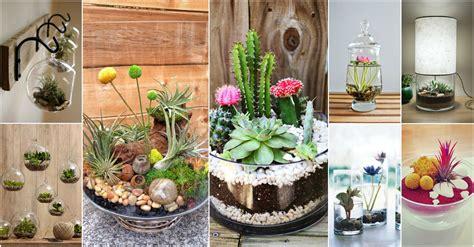 indoor decorating ideas amazing terrarium decor ideas for your indoor garden