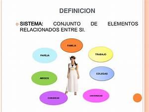 Modelo sistemico (1)