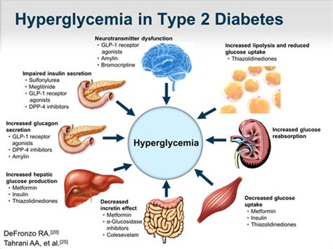 role   kidney  glucose control transcript