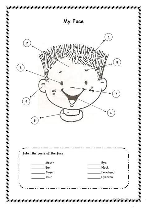 face worksheets  preschool