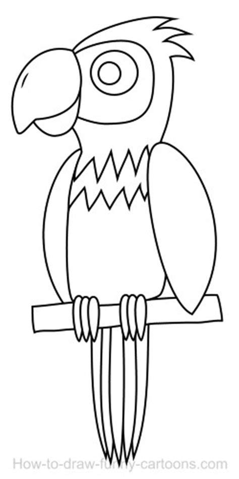 drawing  parrot cartoon