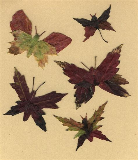 ls made from leaves butterflies made from leaves something for almost nothing