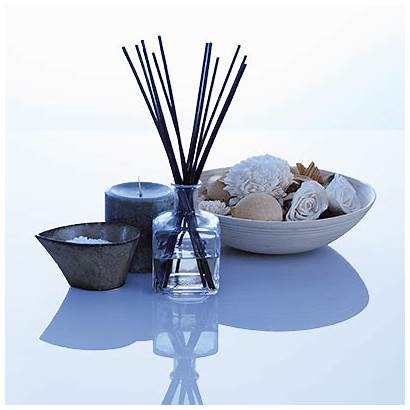 Diffusers Reed Candles Fragrance Candle Alpha Diffuser