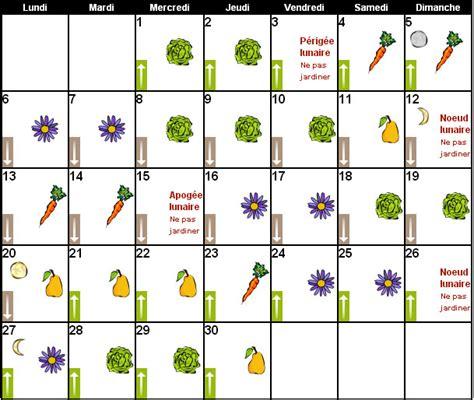 cuisiner feuilles de radis magazine petit jardin n 114 juin 2016 jardinage