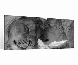 Leinwandbilder Schwarz Weiß : leinwand 1 tlg schwarz wei l we liebe l win tiere paar bilder wandbild 9c126 holz fertig ~ Markanthonyermac.com Haus und Dekorationen