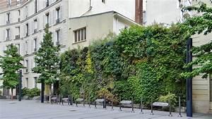 Mur Vegetal Exterieur : les murs v g taux des jardins de babylone garantis pendant ~ Melissatoandfro.com Idées de Décoration