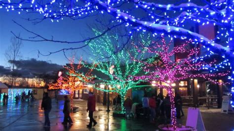 hogle zoo lights the pawprint zoo lights