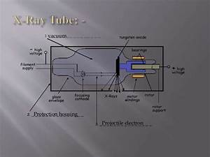 Introduction To The Parts Of X Ray Machine