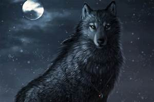 Cool Anime Wolf Wallpapers - 52DazheW Gallery